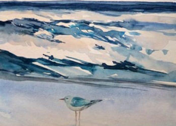 Möwe am Strand - Aquarell sonja Jannichsen