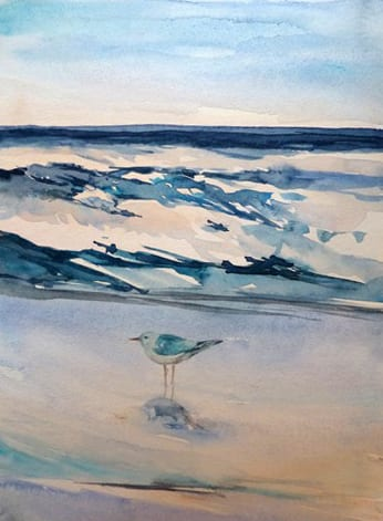 Möwe am Strand - Aquarell